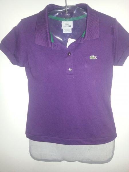 d33d9d68d57 Camiseta Gola Polo Lacoste lilás - Aproveite Imported Clothes